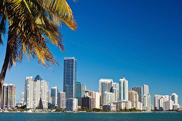 Art Galleries in Miami Florida